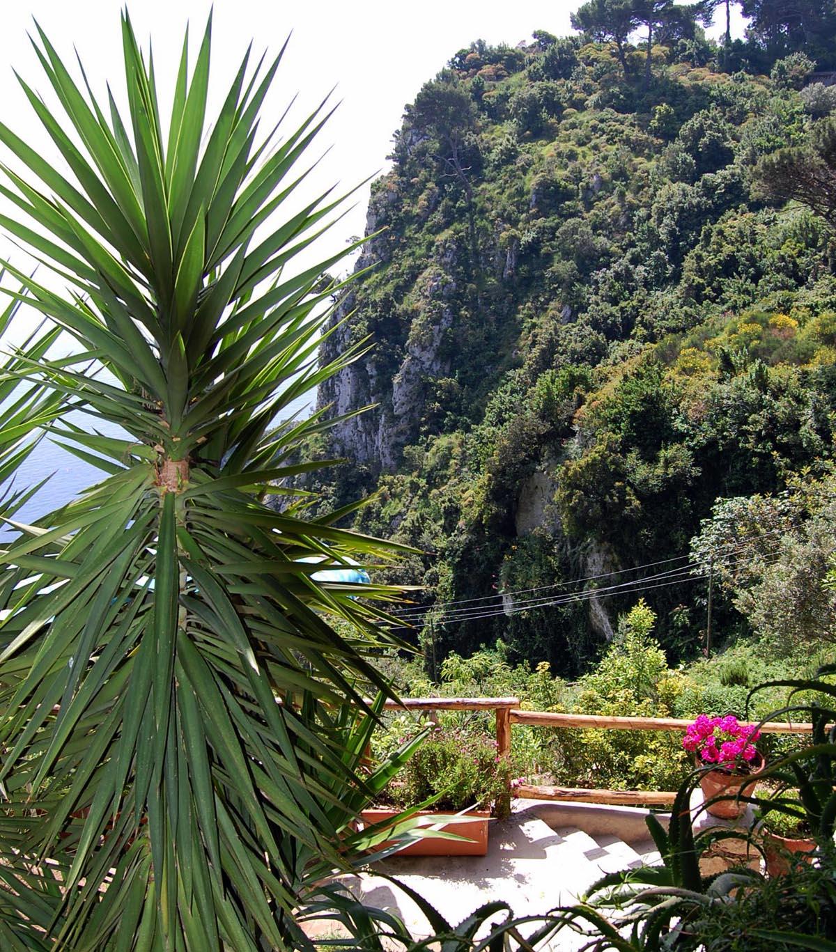 Capri DSC_0126